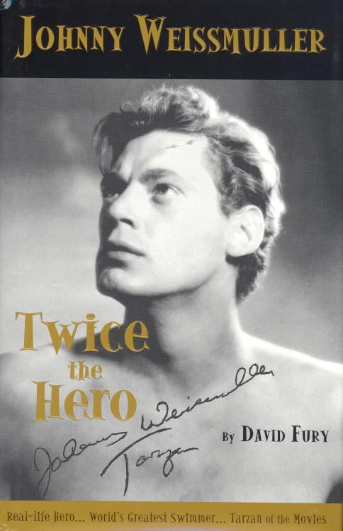 Fury, David - Twice the Hero